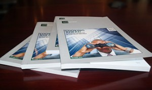 Afrinvest 2015 Nigerian Banking Sector Report